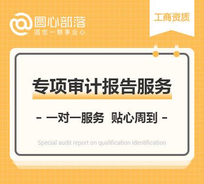 专项审计报告